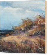 Beach Dune 2 Wood Print by Peter R Davidson