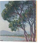 Beach Of Juan Les Pins Wood Print