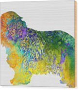 Bearder Collie-colorful Wood Print