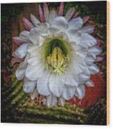 Beautiful Cactus Wood Print