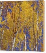 Beautiful Fall Season Nature Renews Itself  Theme Green Trees Reaching For The Sky  Save The Environ Wood Print