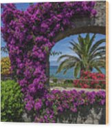 Beautiful Ischia Wood Print