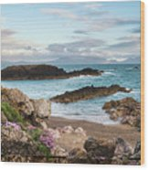 Beautiful Landscape Image Of Rocky Beach With Snowdonia Mountain Wood Print