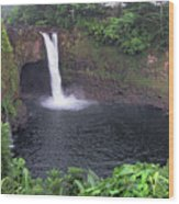 Beautiful Rainbow Falls 2 Wood Print