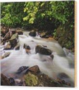 Beautiful Stream In Western Ghats Wood Print