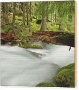 Beauty Creek Wood Print