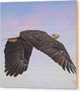 Beauty In Flight Wood Print