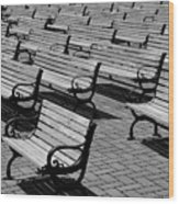 Benches Wood Print by Perry Webster