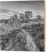 Beyond The Rocks Wood Print