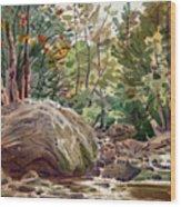 Big Rock At Sope Creek Wood Print