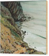 Big Sur California Wood Print