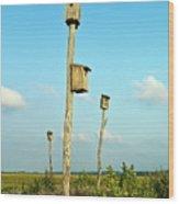 Birdhouses In Salt Marsh. Wood Print