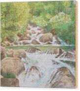 Bishop Creek South Fork Wood Print by Charles Hetenyi