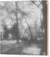 Black And White  Wood Print