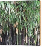 Black Bamboo Wood Print