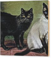 Black Manx And Siamese Cats Wood Print