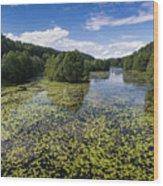 Black River Hancza In Turtul.  Wood Print