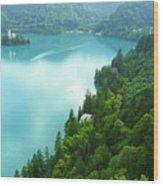 Bled Wood Print