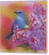 Blue Bird In The Lilac's Wood Print