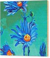 Blue Daisies Wood Print