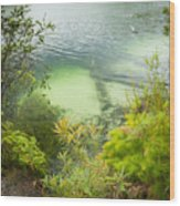 Blue Lake Stradbroke Island Wood Print