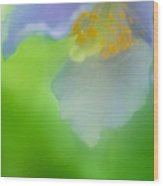 Blue Poppy 4 Wood Print