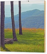 Blue Ridge Mountains - Virginia 2 Wood Print