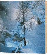 Blue Winter - From The Cycle - Straight From The Plate Wood Print