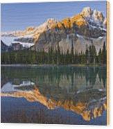 Bow Lake And Crowfoot Mountain Wood Print