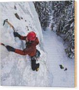 Brandon Prince Climbing Genesis I Area In Hyalite Canyon  Wood Print