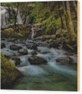 Brandy Creek Falls Wood Print
