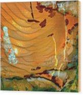 Brecciated Imperial Jasper Wood Print