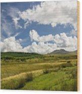 Brecon Beacons National Park 4 Wood Print