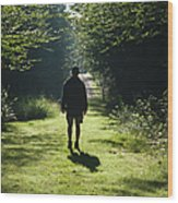 Bretzfelder Memorial Park - Bethlehem New Hampshire Wood Print