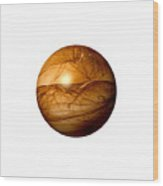 Brown Abstract Globe Wood Print