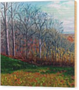Brown County Winter Wood Print
