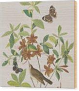 Brown Headed Worm Eating Warbler Wood Print
