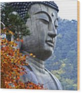 Buddha In Autumn Wood Print