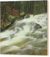 Buffam Brook Cascades Wood Print