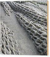 Buried Fishing Net Wood Print