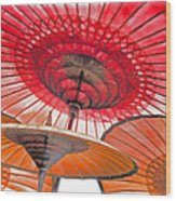 Burmese Parasols Wood Print