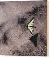 Butterfly And Sand Wc Wood Print