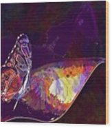 Butterfly Wings Insect Nature  Wood Print