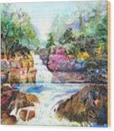 Buttermilk Falls IIi Wood Print by Patricia Allingham Carlson