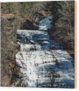 Buttermilk Wood Print