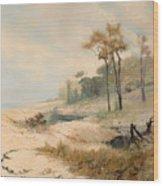 Cabralia Bay Wood Print