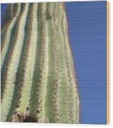 Cactus IIi Wood Print