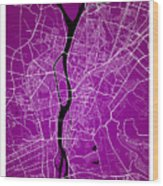Cairo Street Map - Cairo Egypt Road Map Art On Colored Backgroun Wood Print
