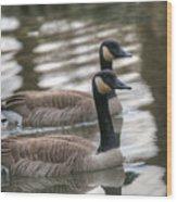 Canadian Geese Wood Print