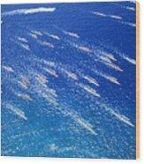 Canoe Race Wood Print